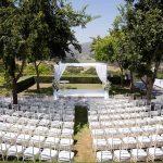 wedding, beautiful, day