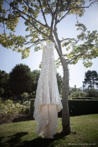 Wedding dress in a tree, wedding photography ideas for brides