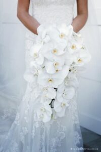 Bridal bouquet, cascading white orchids
