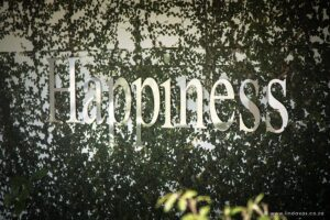 Happiness wedding sign on wall with ivy