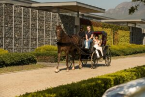 Bride in WONA concept bridal gown, horse carriage. Bride arriving in horse carriage